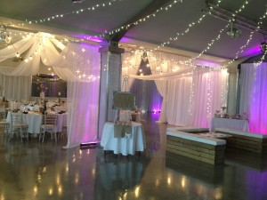 ladywood fairy light canopy
